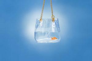 Roberti Scichilone Progetto 2015 Aribea Bags Commercial Still Life Lutherdsgn ADV Immagine 3